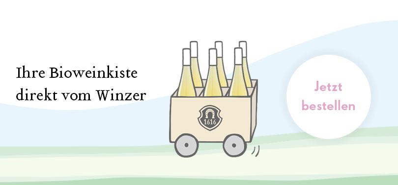 Bio Weine bestellen direkt beim Winzer