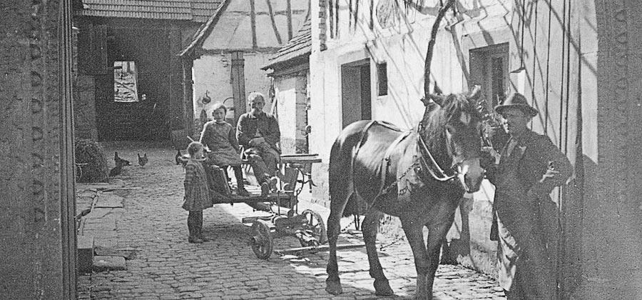 Historisches Foto: Pferde im Weingut