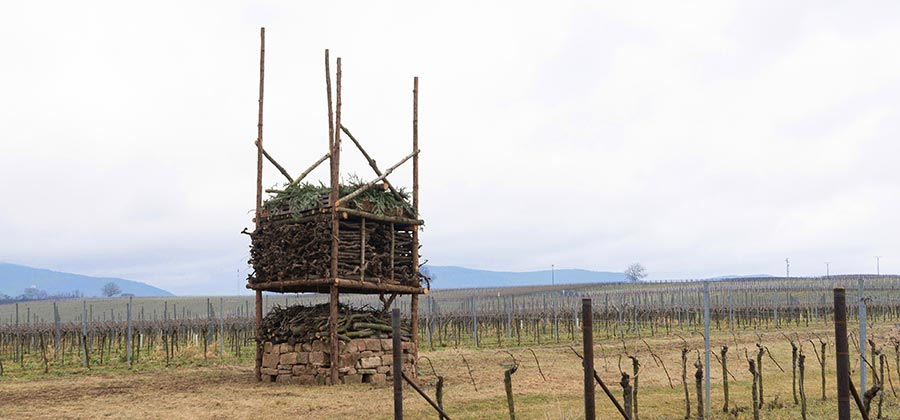 Lebensturm im Weinberg, NABU Partnerbetrieb Naturschutz