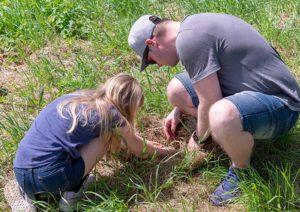 Mit Kindern in der Wiese Insekten suchen