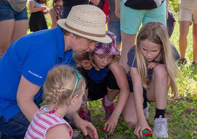 Insektenbeobachtung bei der Kinderwanderung, NABU u. NAJU