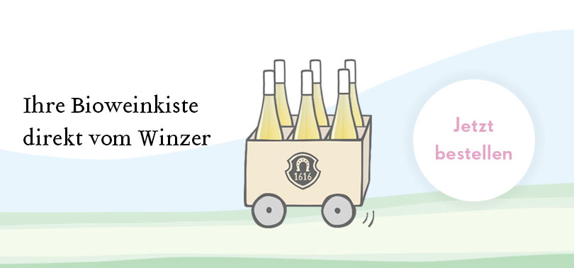 Pfaffmann Weinkiste bestellen